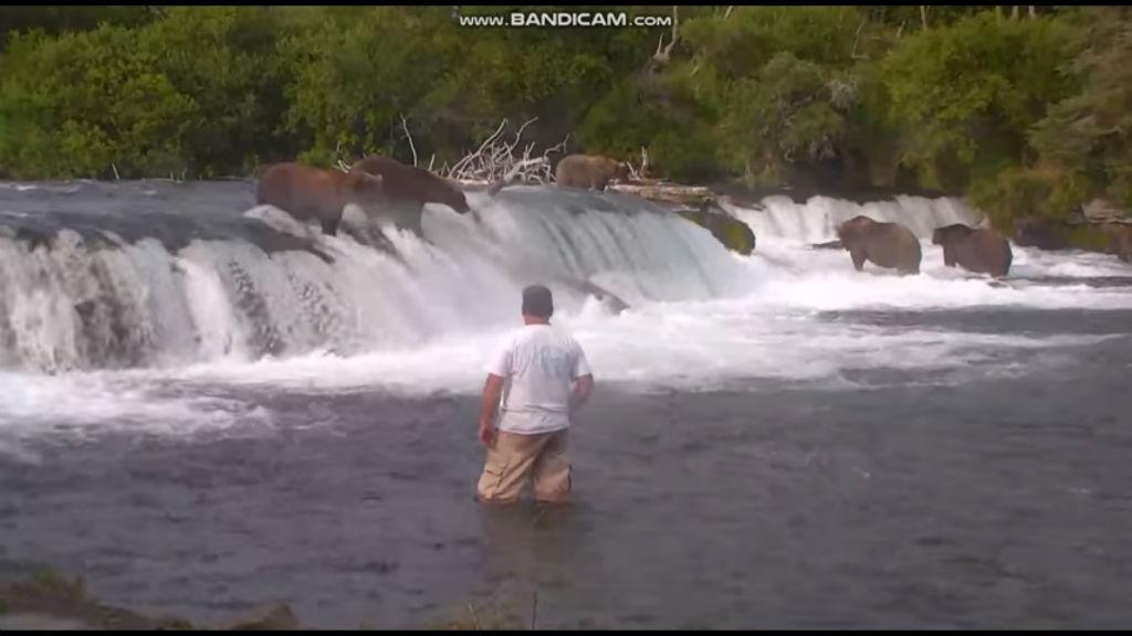 katmai national park selfie image