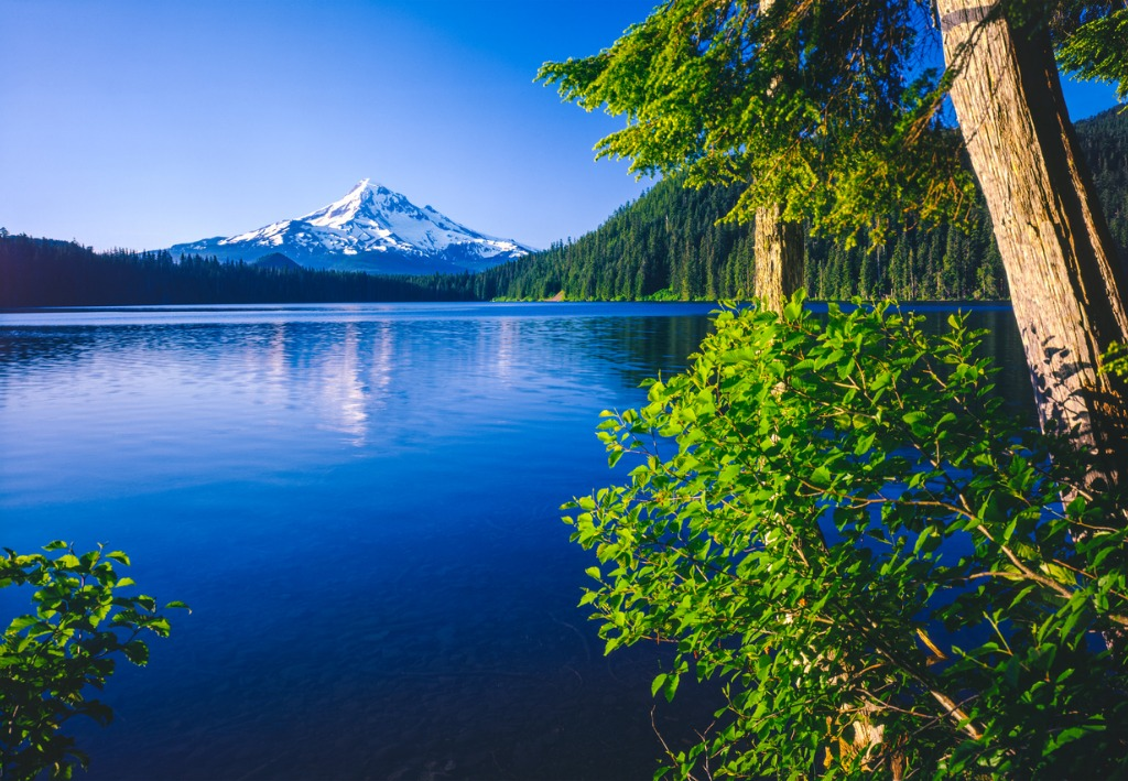 spring morning with the reflection of mt hood or picture id478656474 image