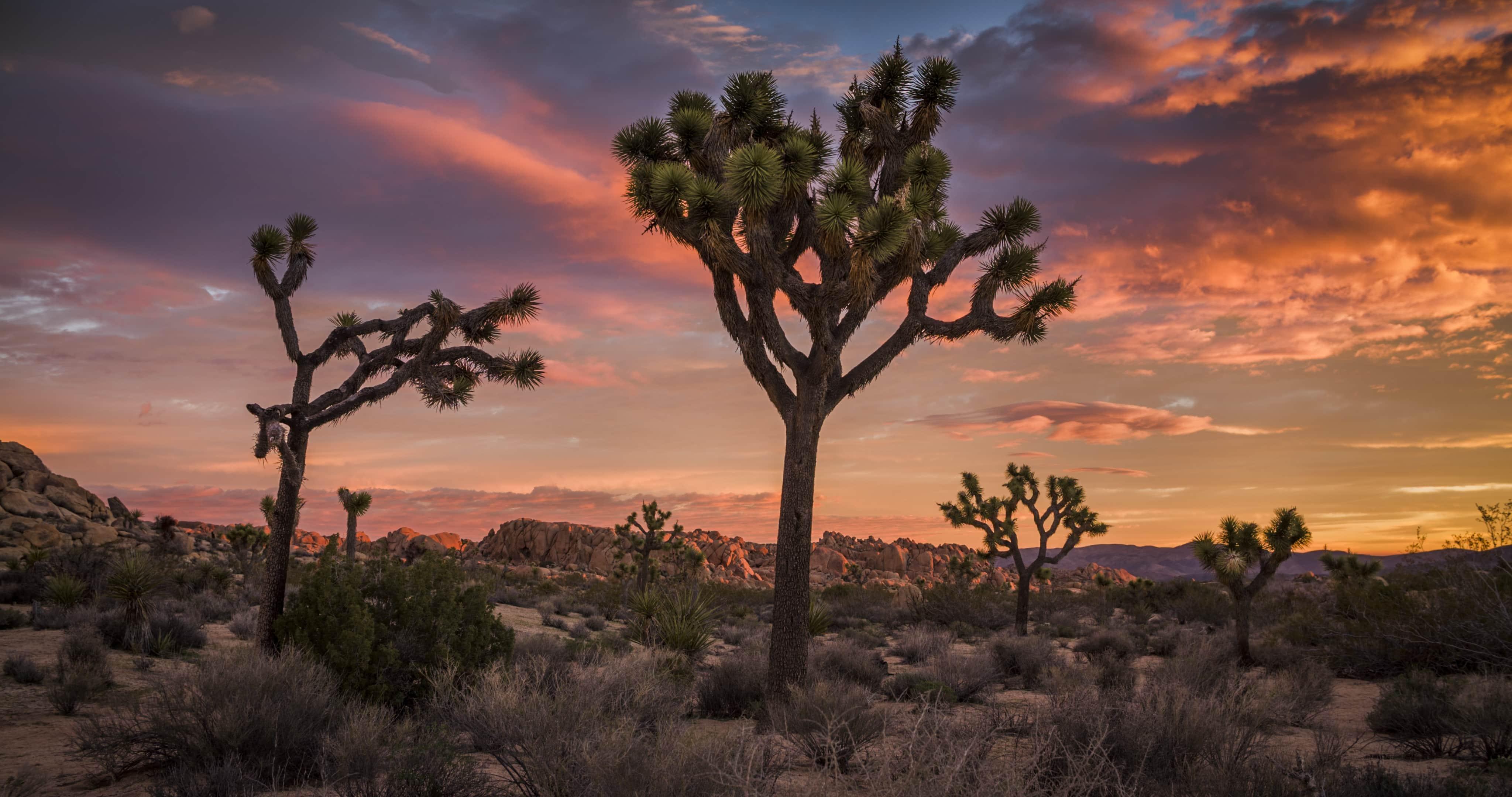 common landscape photography problems image