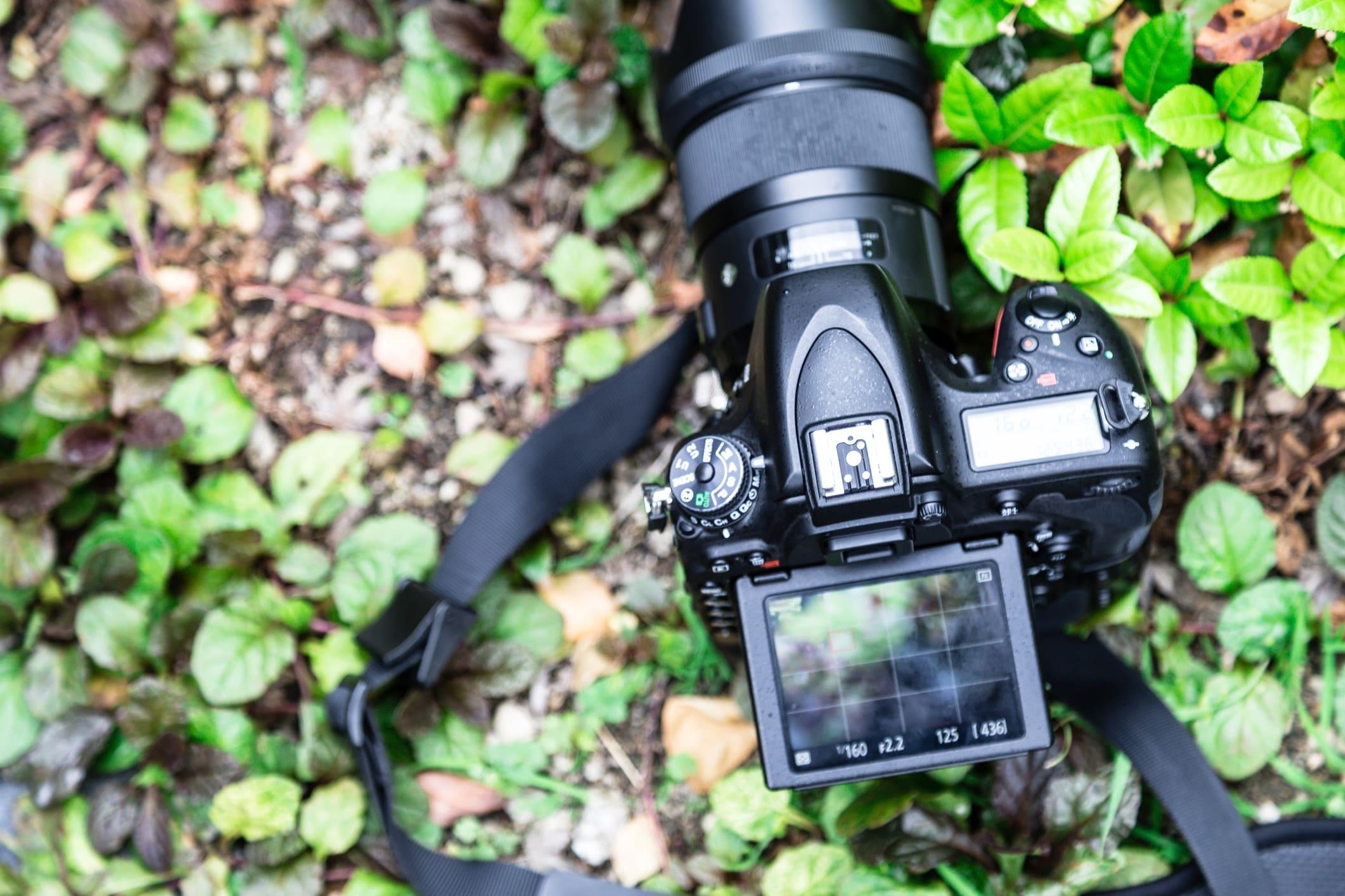 budget camera strap image