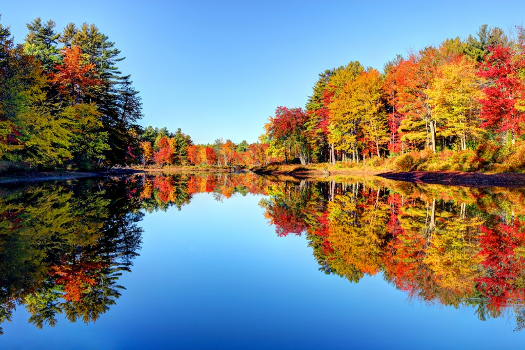autumn foliage in the monadnock region of new hampshire picture id1014851182 image