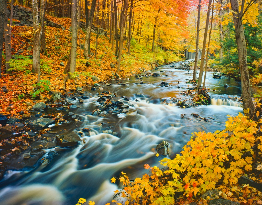 autumn in vermont picture id148795522 image