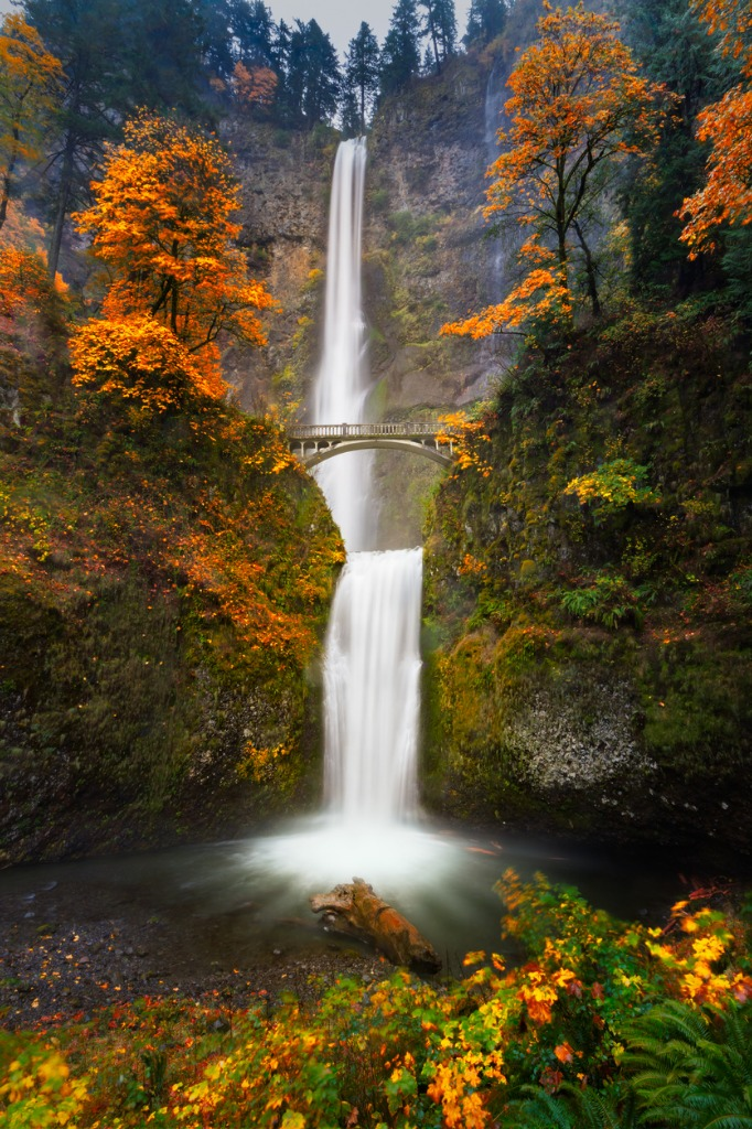 multnomah falls in autumn colors picture id544975060 image