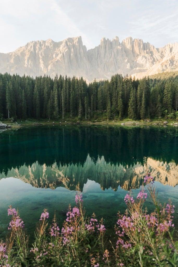 landscape foreground image