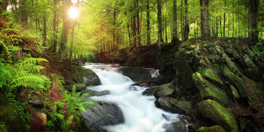 waterfall on the mountain stream located in misty forest picture id149150491 image