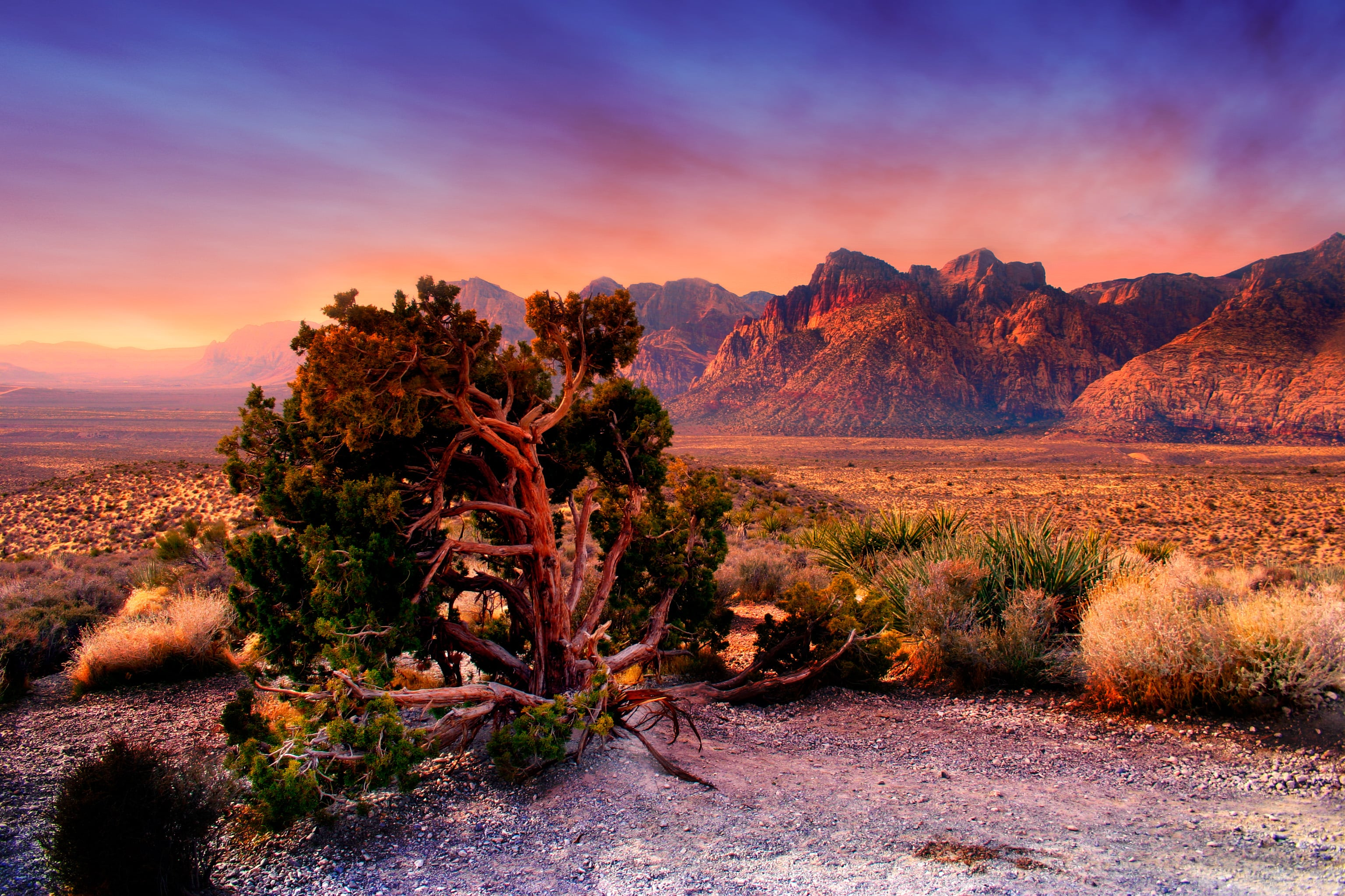 nevada photography and travel guide image