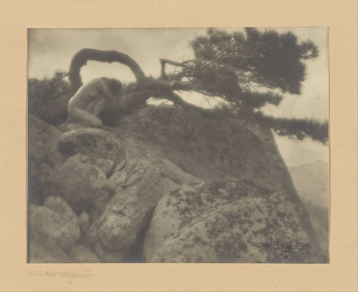1255px Anne W. Brigman American The Lone Pine Google Art Project image