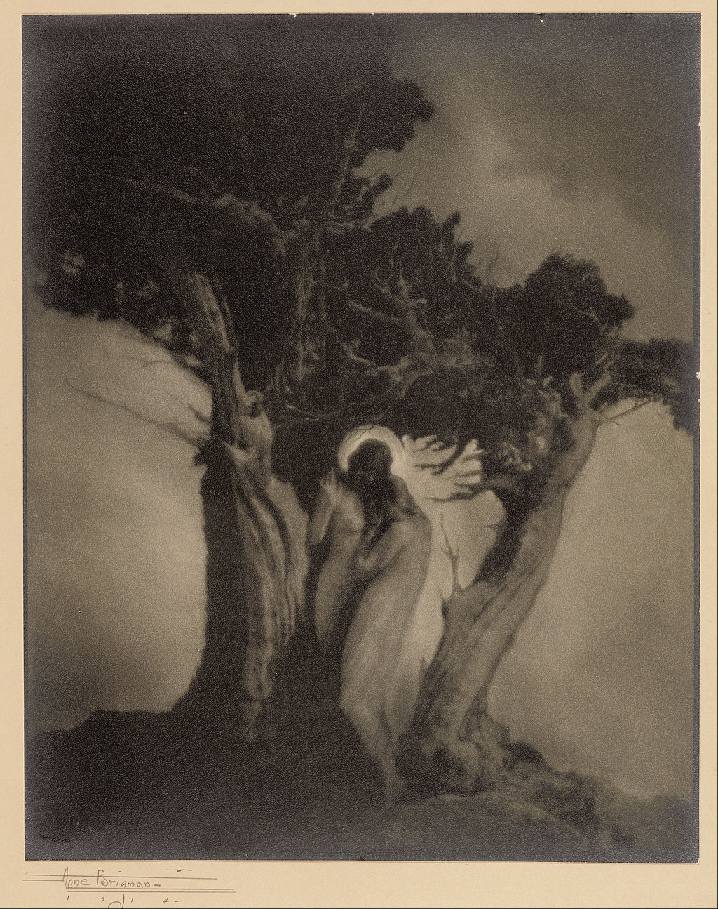 Anne W. Brigman American The Heart of the Storm Google Art Project image