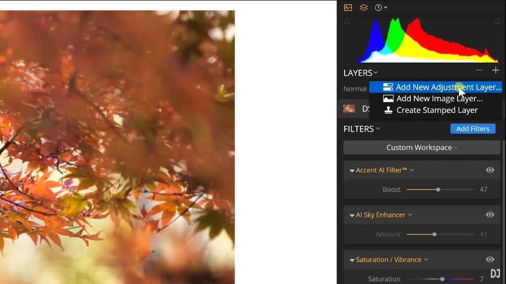 adjustment layer luminar 3 image