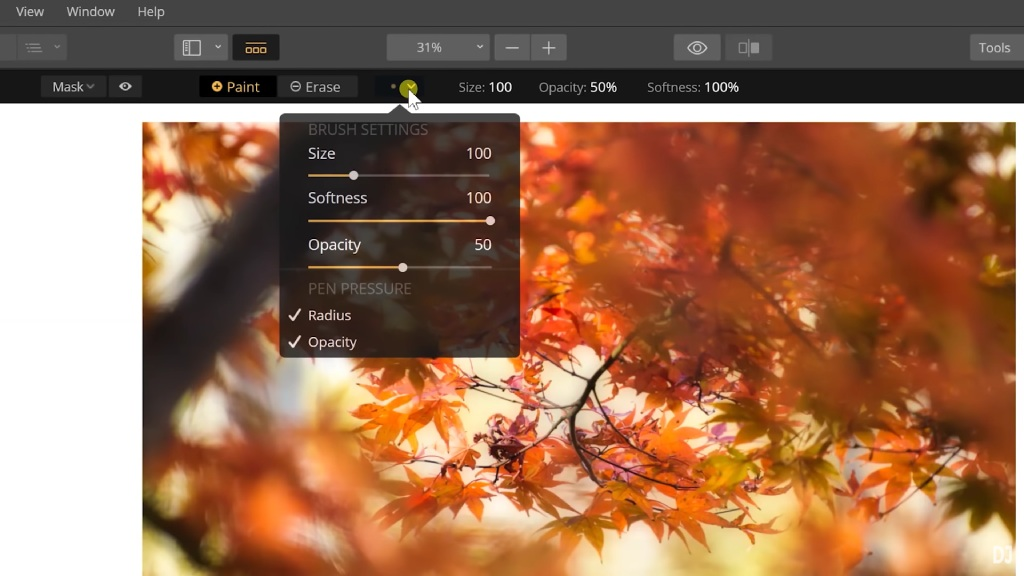 layer brush image
