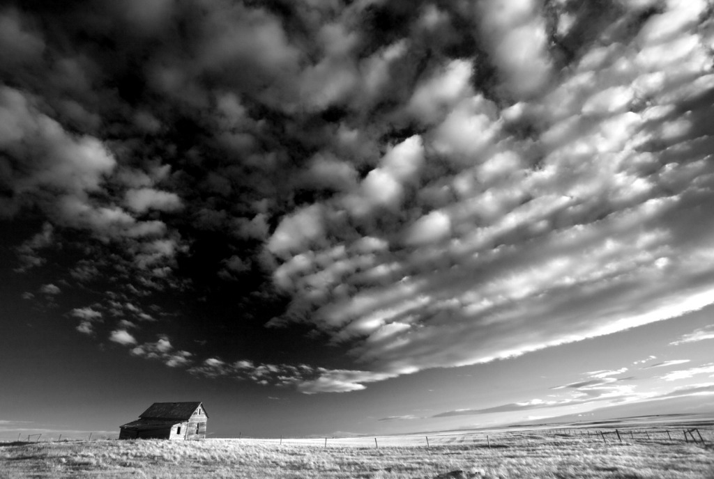How to Get Better Black and White Photos Find High Contrast Scenes image
