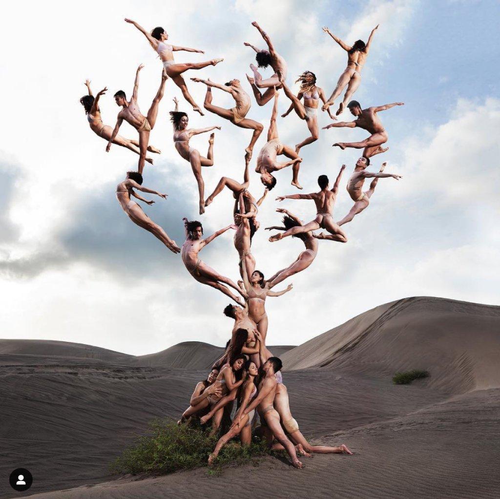 tree of life image