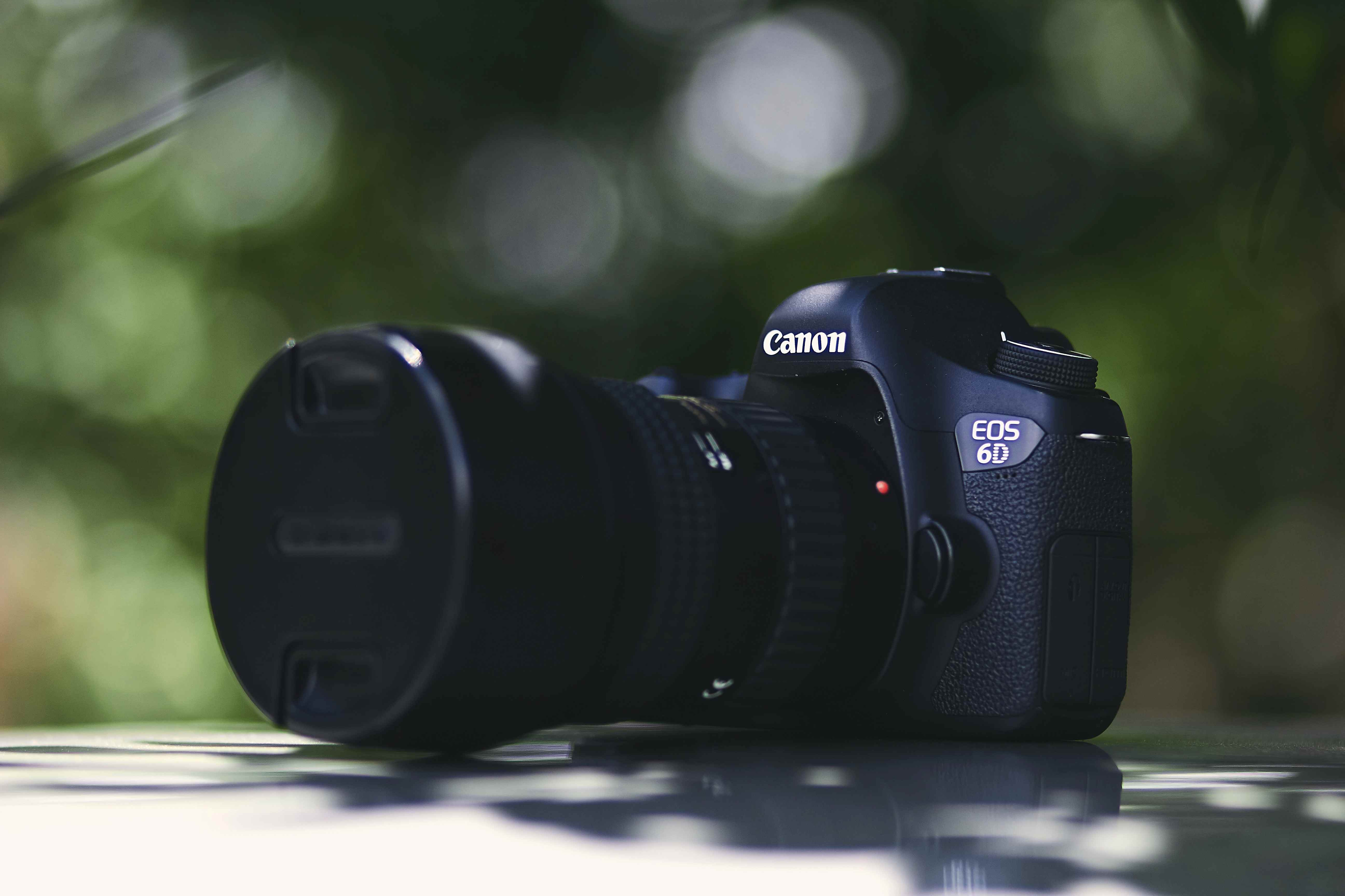 Canon 6D Mark III Release date