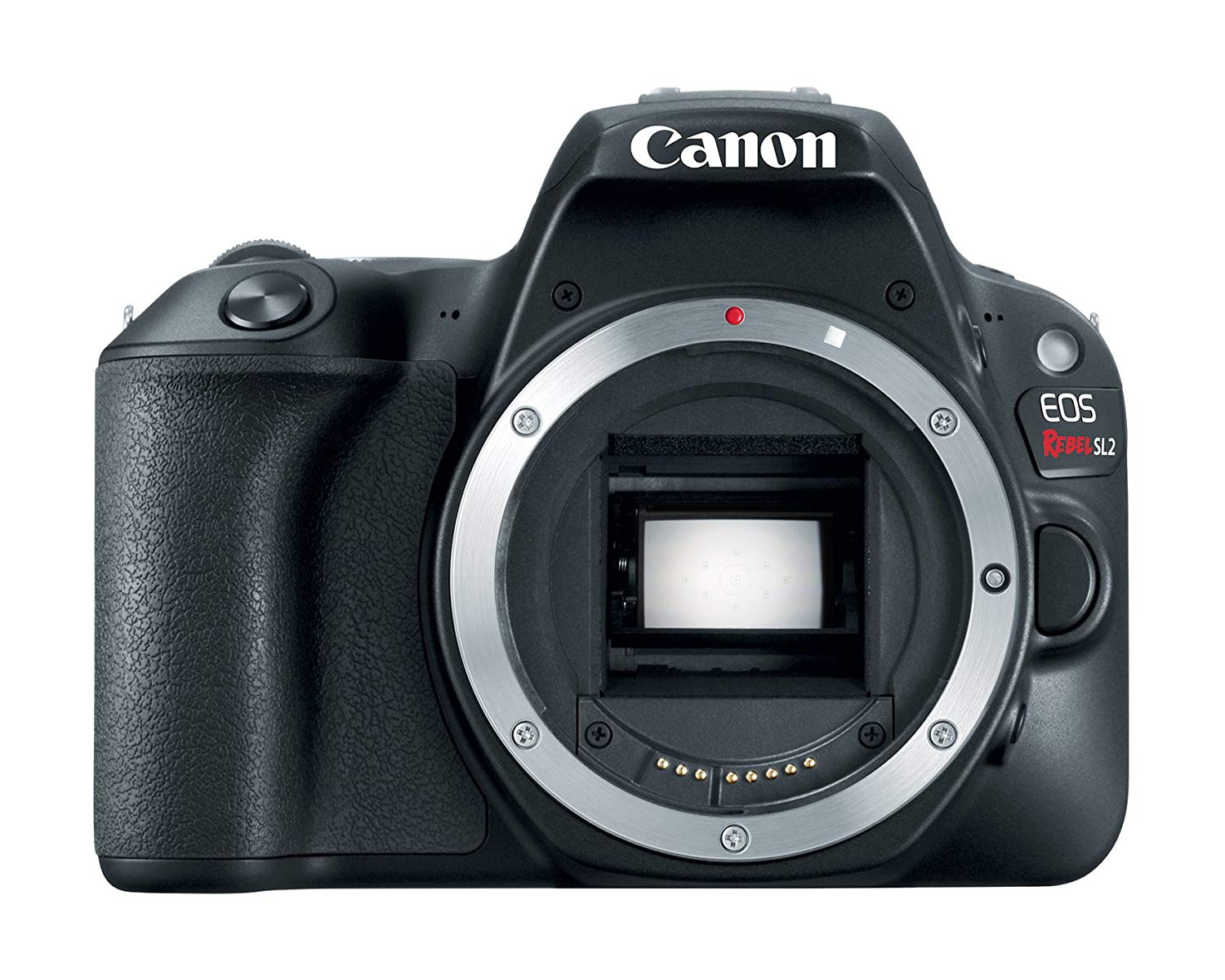 best budget cameras for 2019 canon 1 image