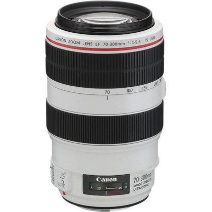 canon 70 300 image