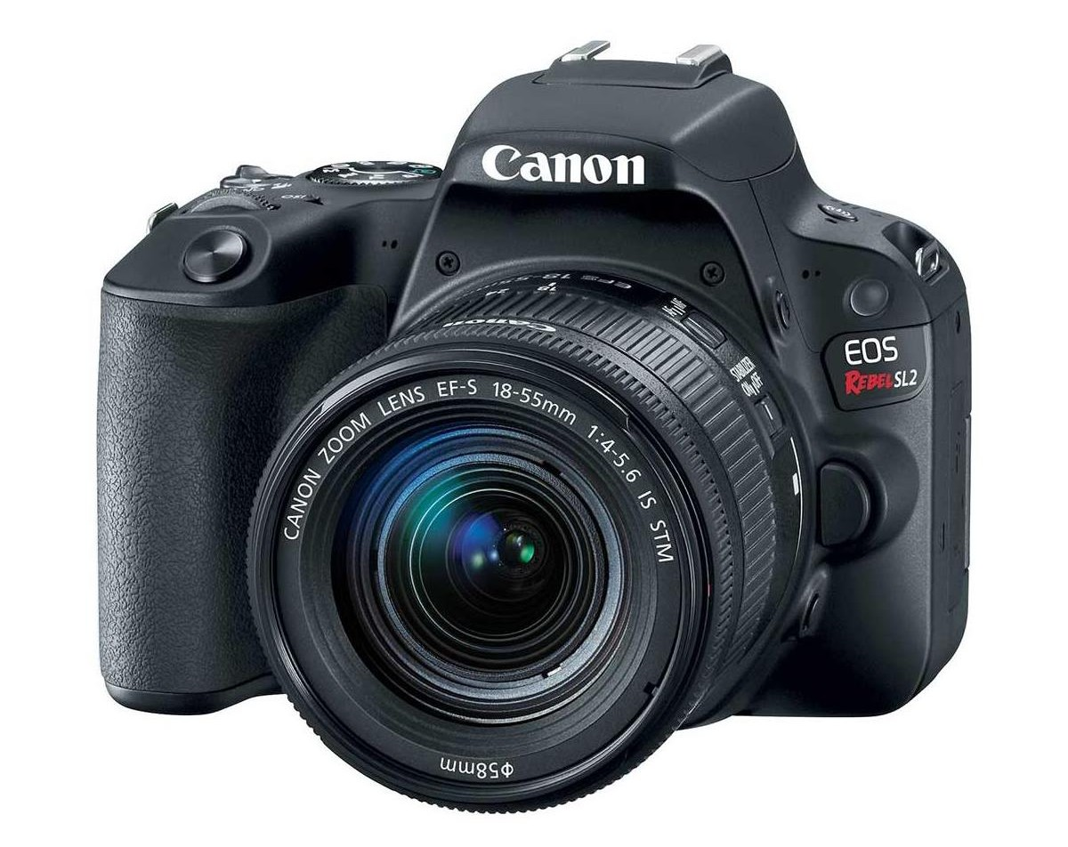 best entry level dslr canon sl2 image