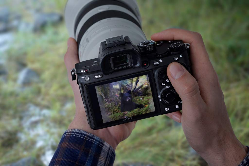 sony a7r iii video features image