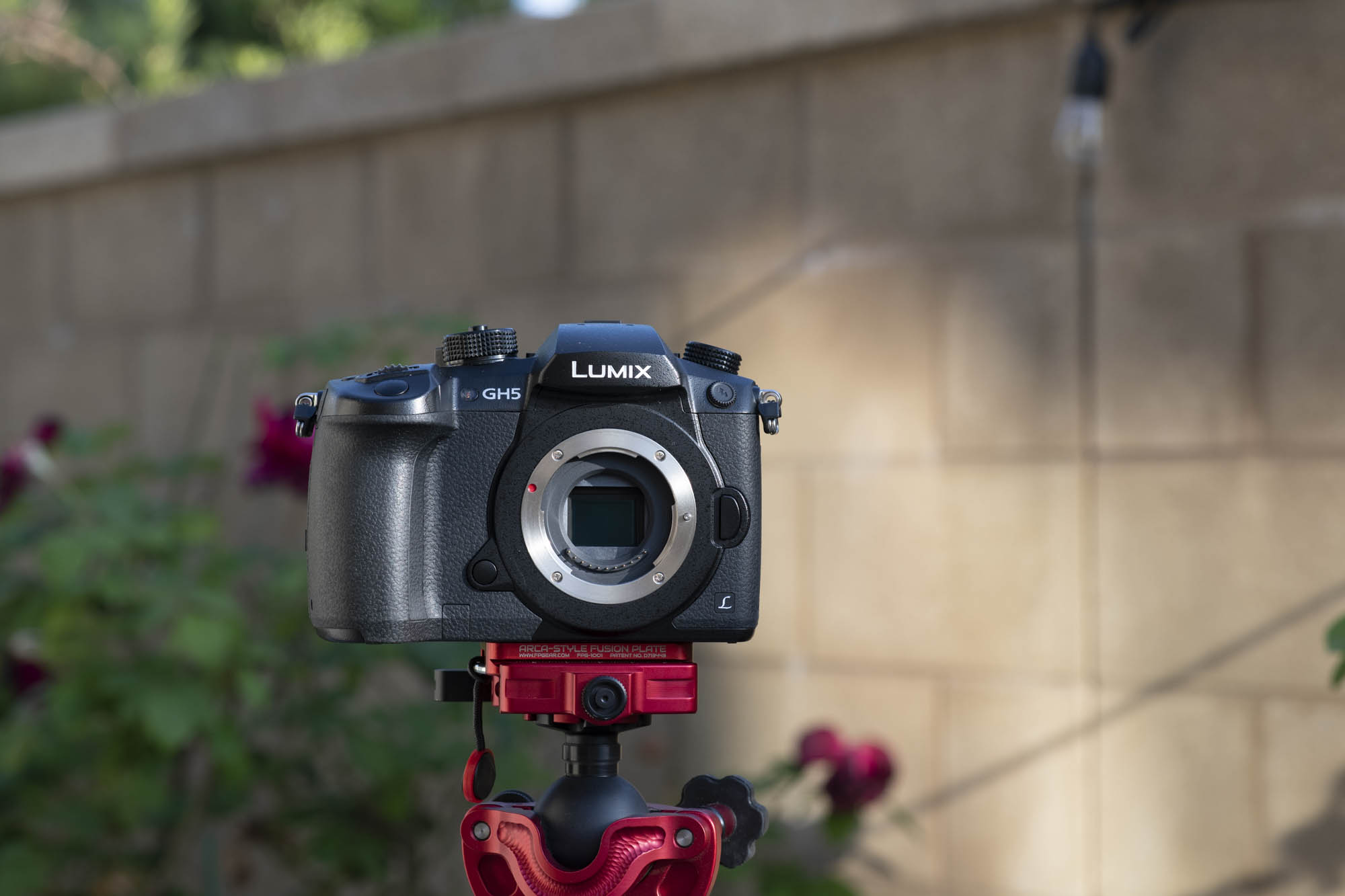 panasonic gh5 review front image