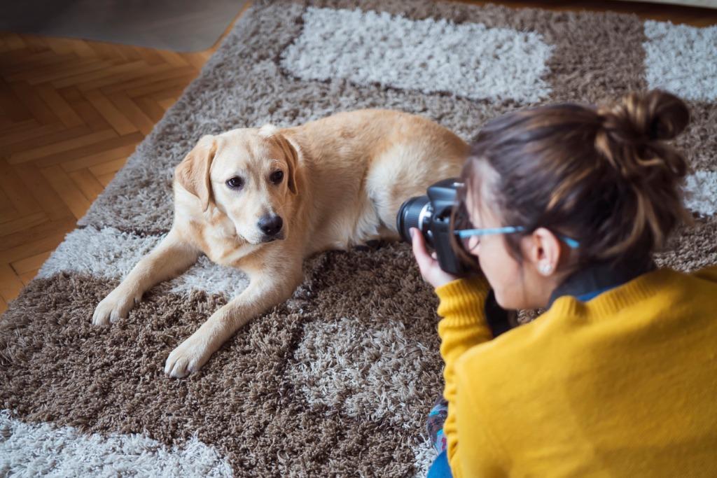 camera lens tips 2 image
