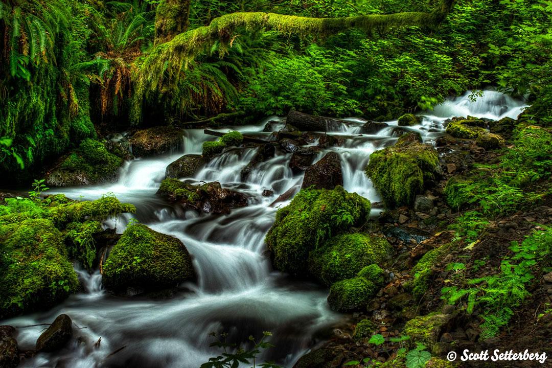 Oregon Photo Workshops Fairy Falls image