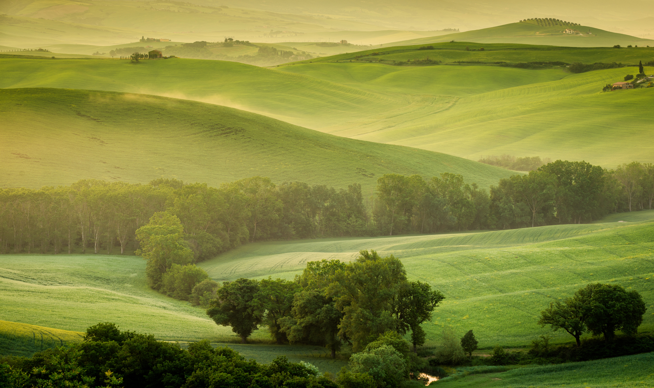 Fundamental Landscape Photography Tips image