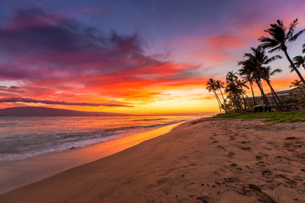 Warm Lighting Sunrise and Sunset image
