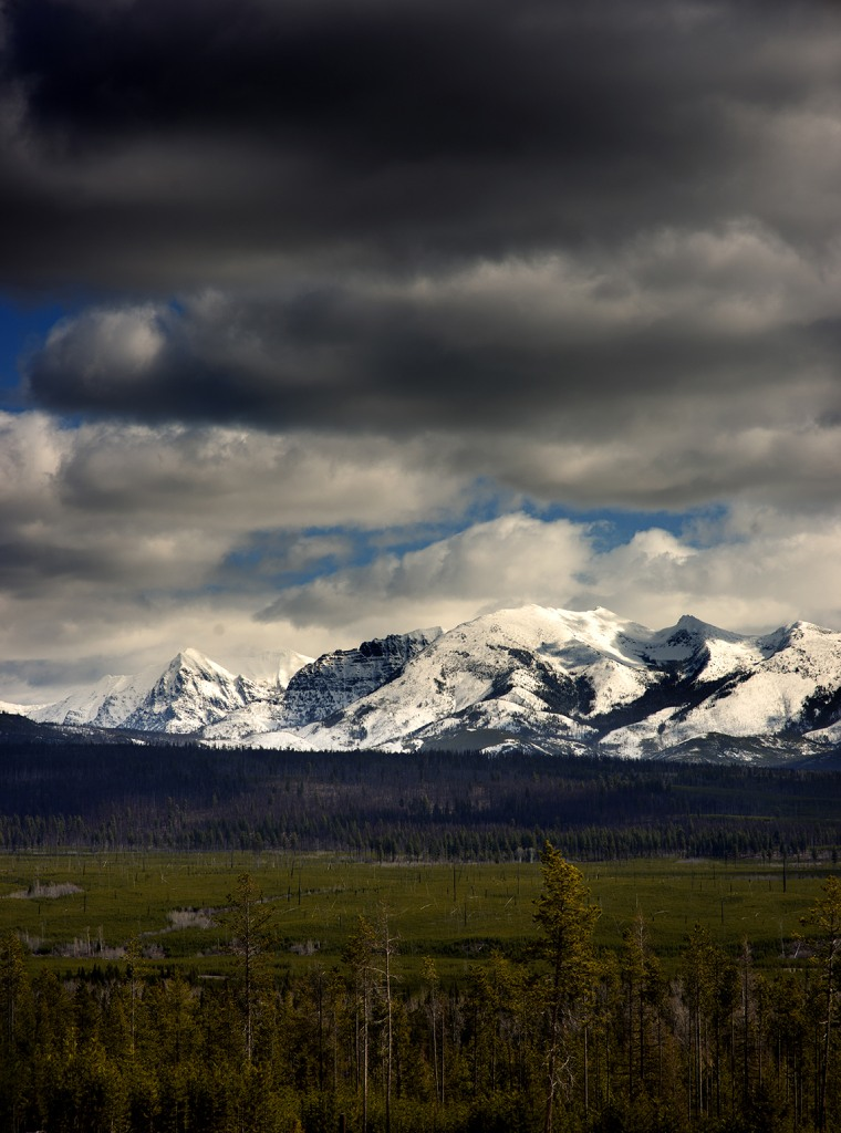 plan your visit to glacier image