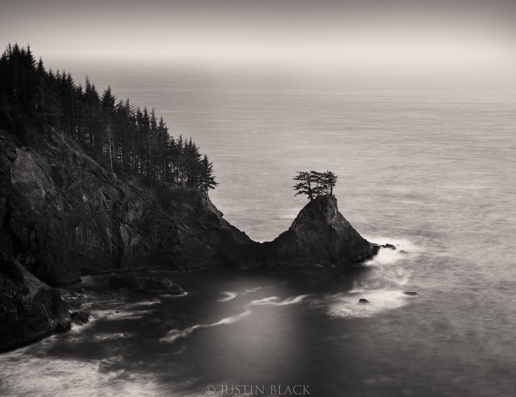 what to photograph redwood coast 0 image