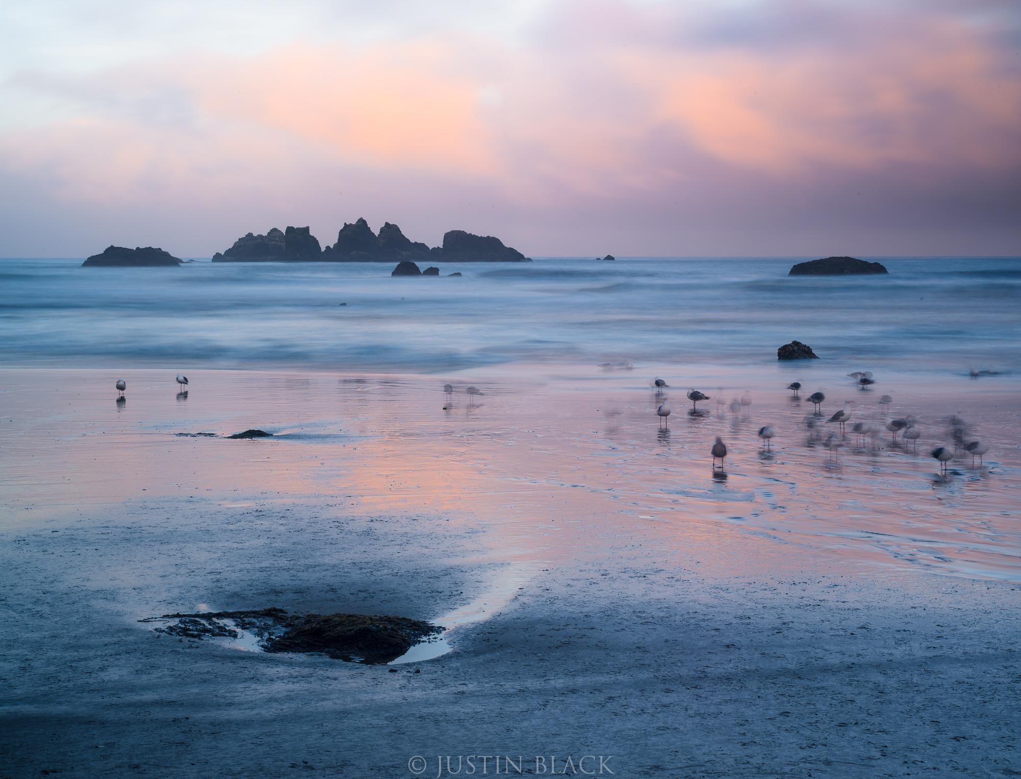 photography tips oregon coast 1 image