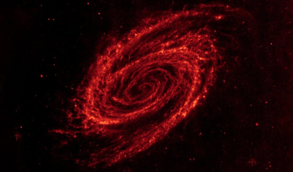 infrared photo image