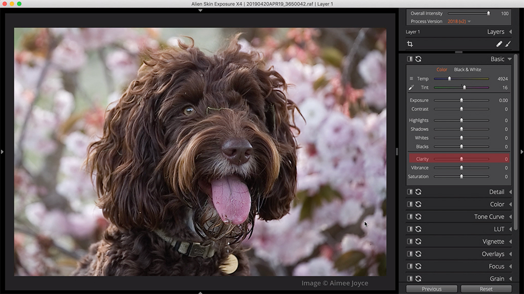 how to edit a flat photo clarity 1 image