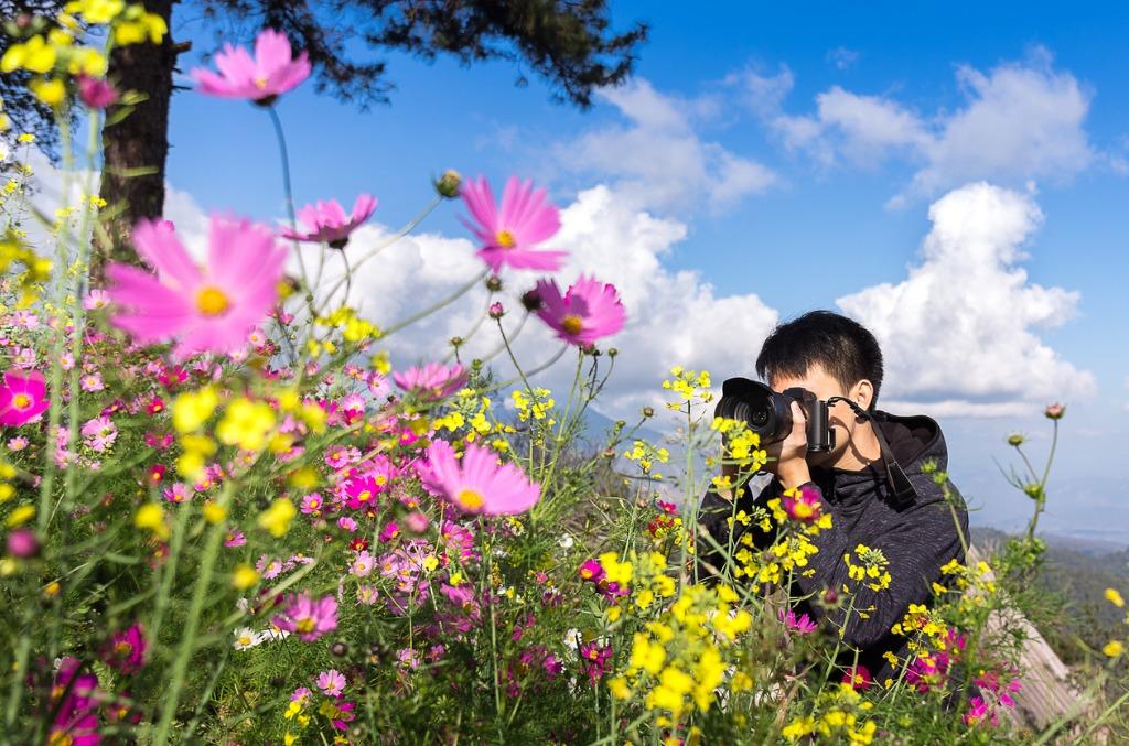24 70mm f2.8 1 image