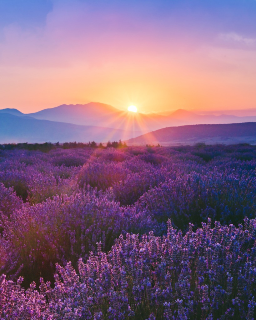 how to improve landscape photos 1 image