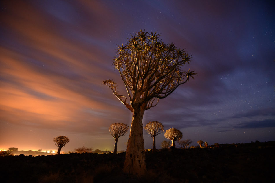 photographing namibia 3 image