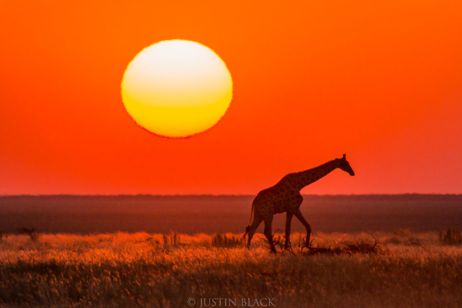 namibia photography and travel guide image