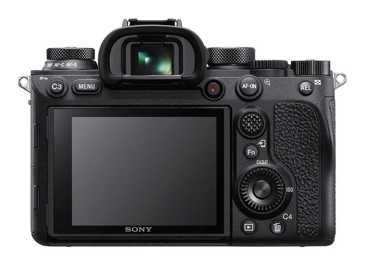 Sony a9 II Video Performance image