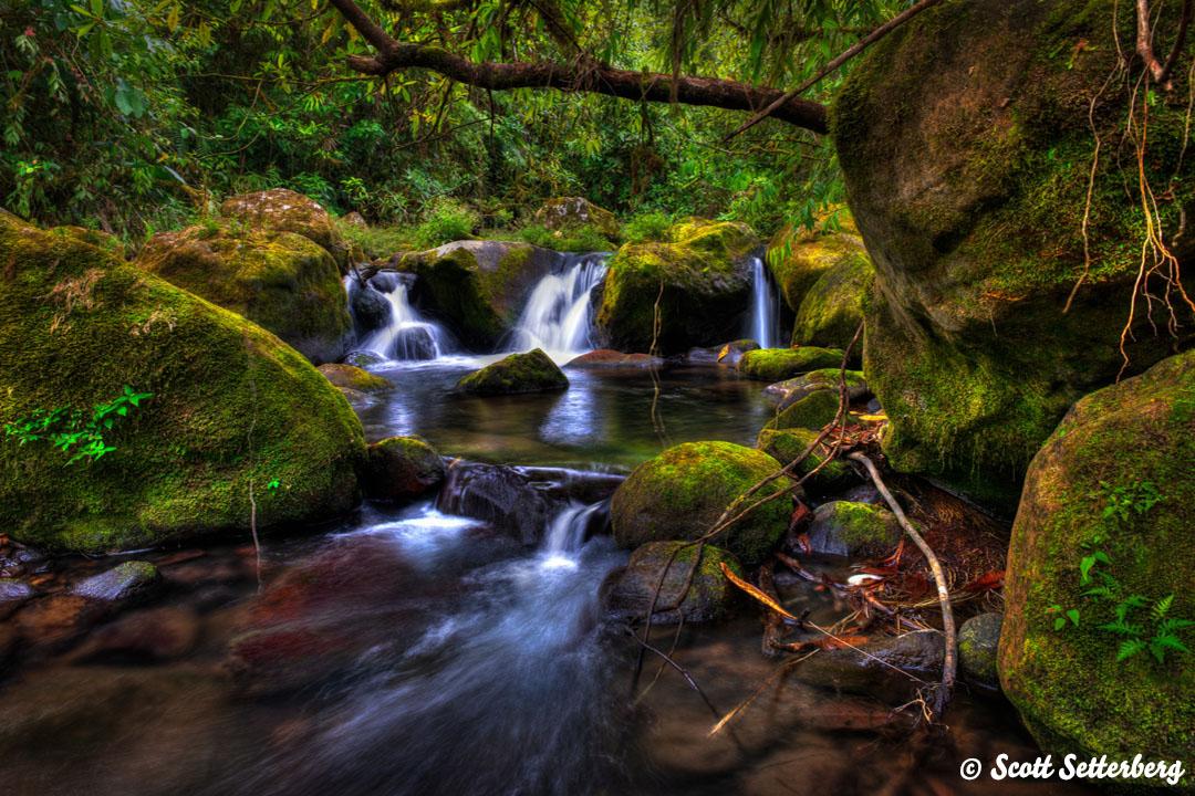 1. Bajos Eden 1080x720x150 image