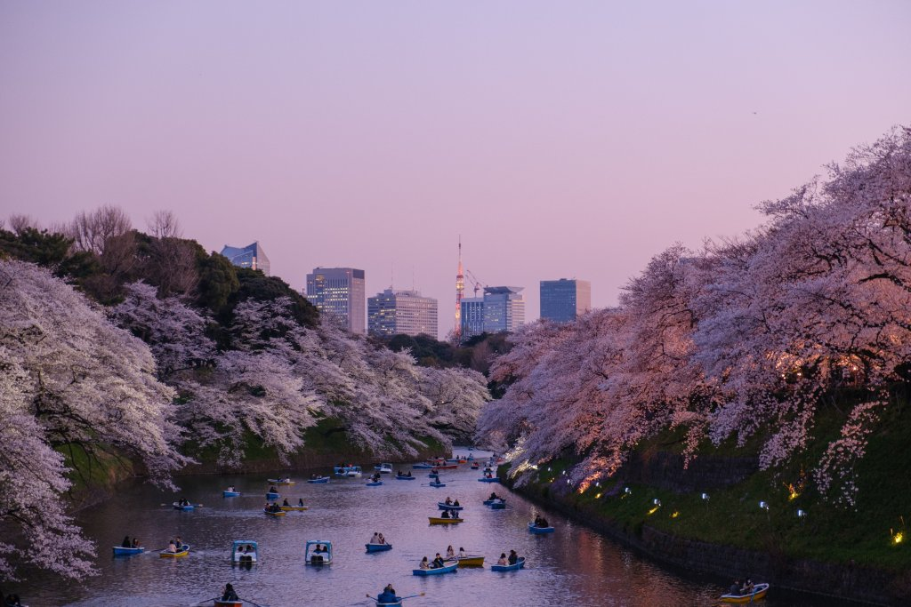 tokyo photography spots image