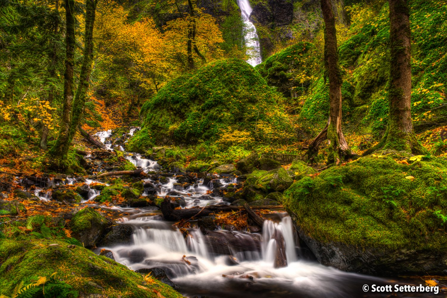 oregon landscape photography image