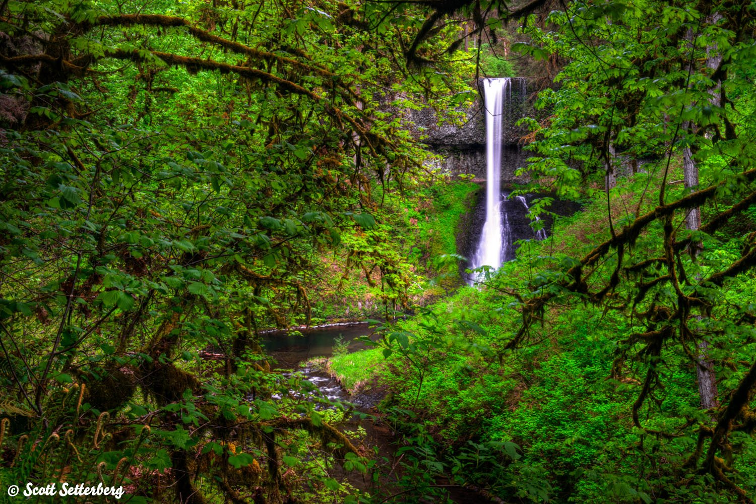 oregon photography tour image