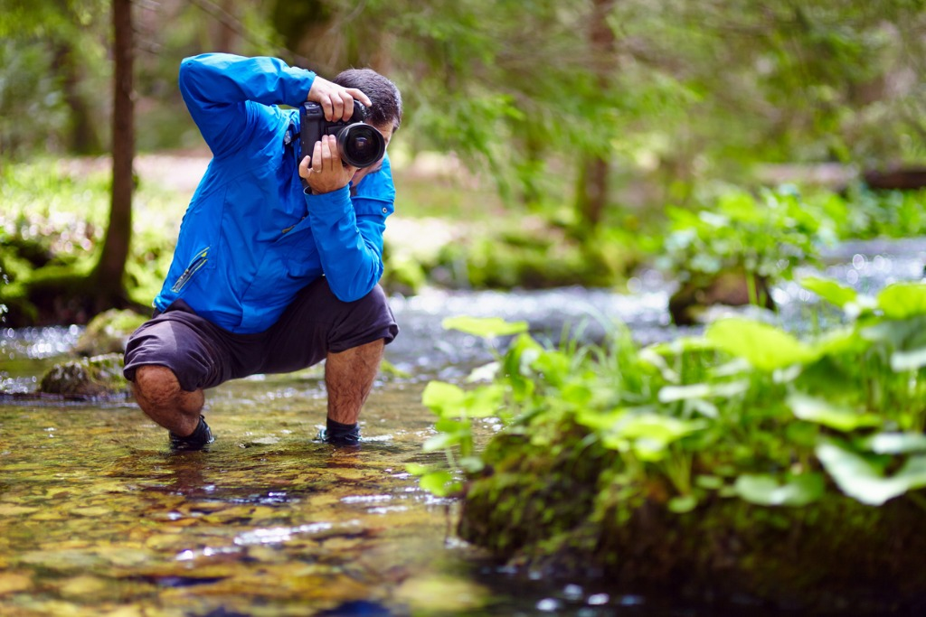 Wildlife Landscape Photography Tips What You Can Do While Self Isolating image
