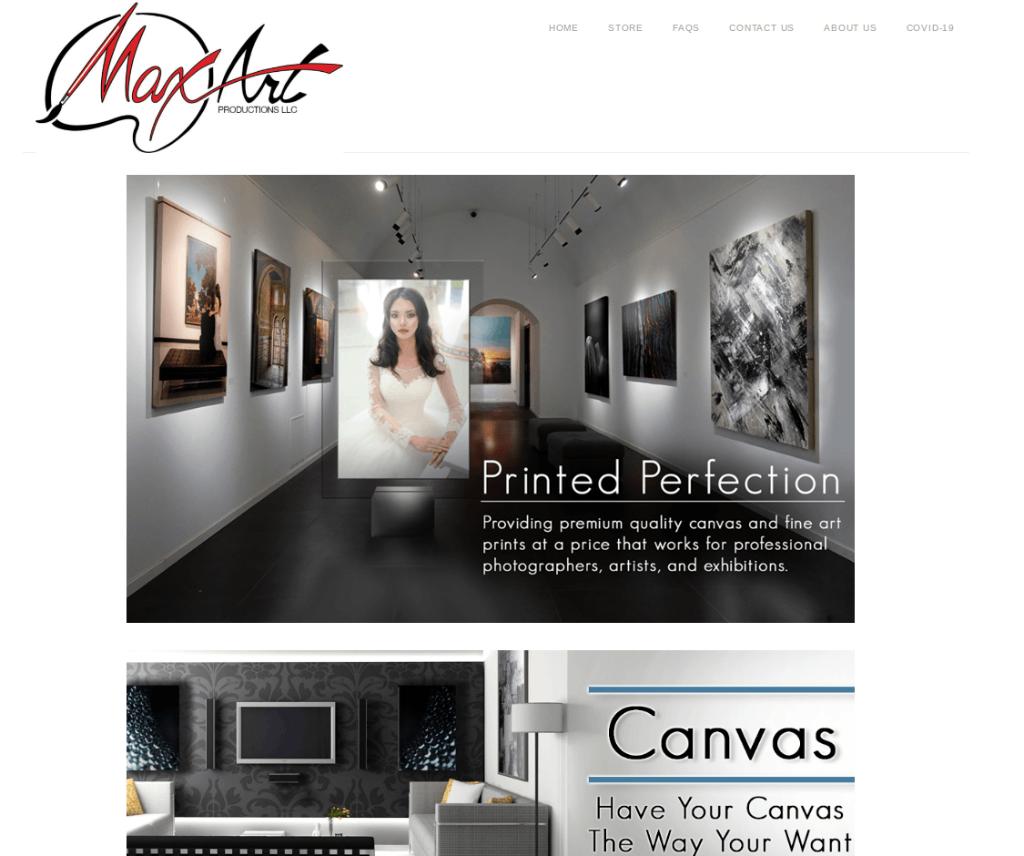 about max art pro image
