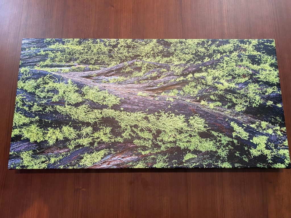 max art pro canvas print review image