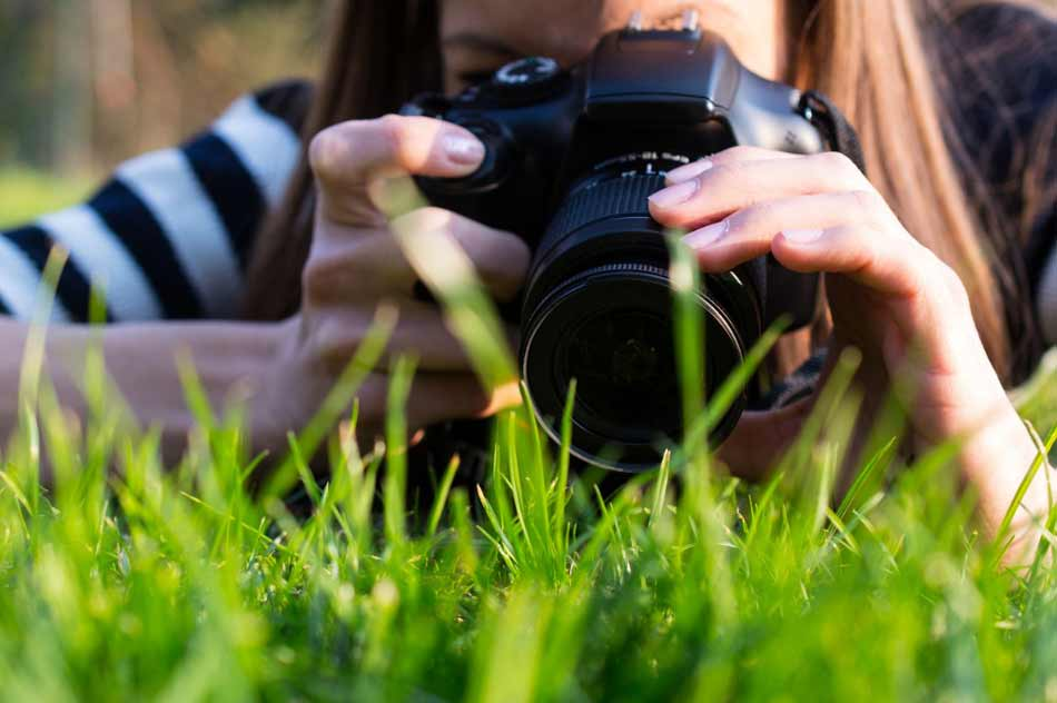 Beginner Photography Projects image