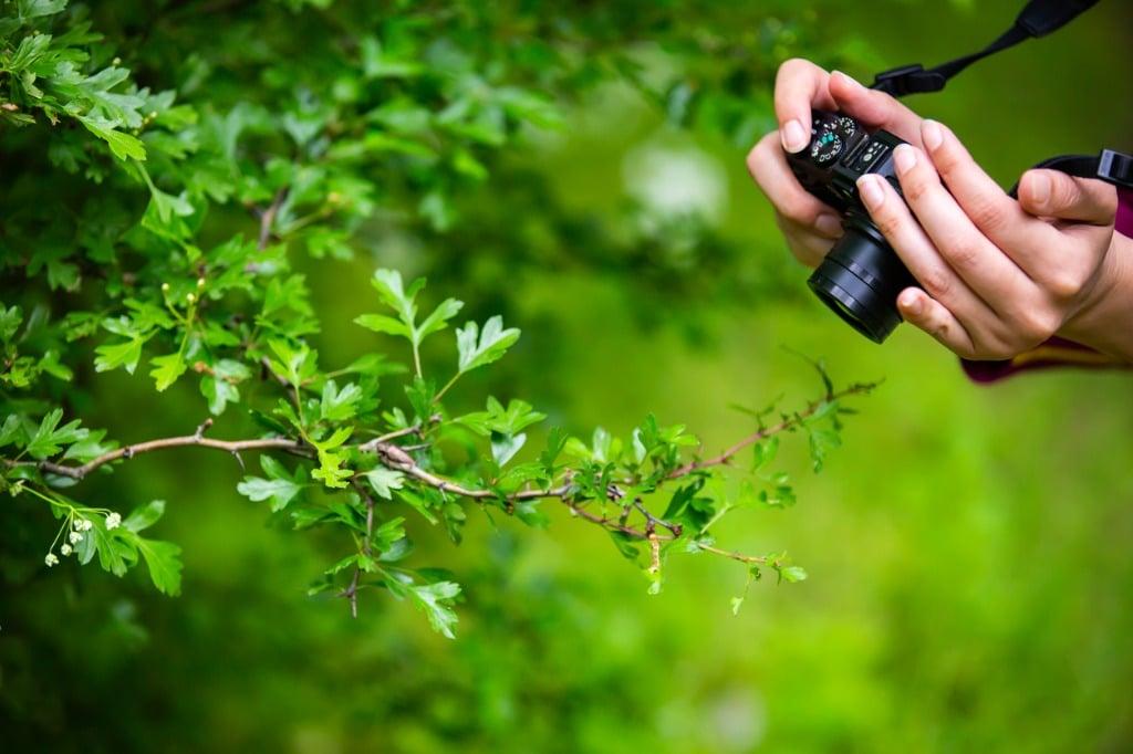 Canon PowerShot G7 X III Review
