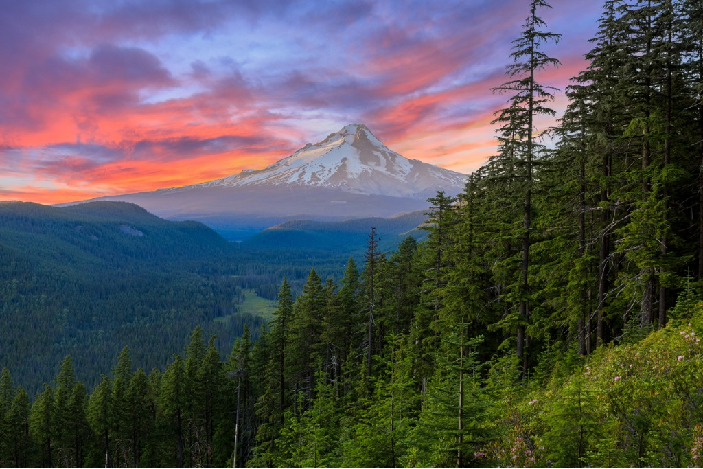 mount hood photography 3 image