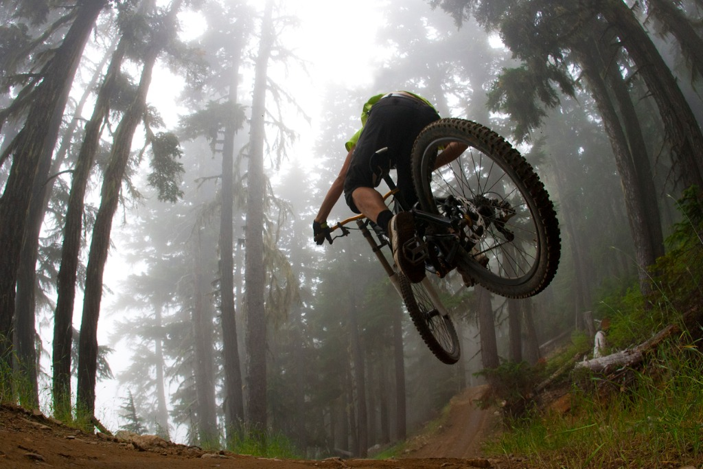 trek bicycles image