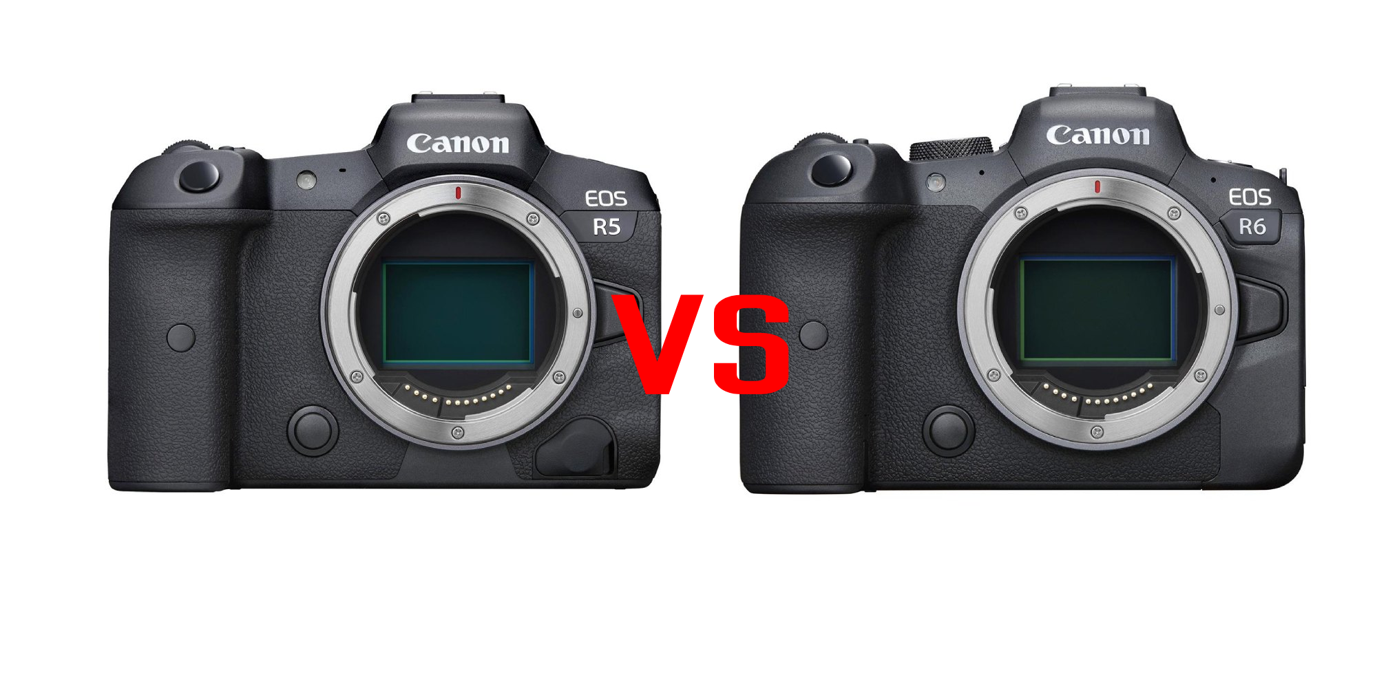 canon eos r5 vs eos r6 image