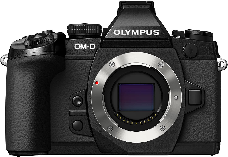 Olympus OM D E M1 image