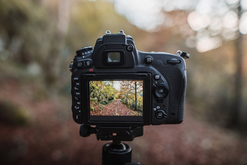 tips for taking better photos 1 image